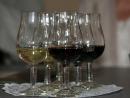 На Кубани началось производство первого в России кошерного вина
