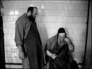 Религиозное жертвоприношение могут запретить в Нидерландах