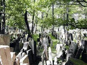 В Прагу отправили «святую землю»