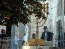 Молодые поляки приехали в Израиль утвердить свою еврейскую идентичность