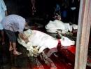 В Дании введен запрет на кошерный забой скота