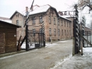 More than 100 Auschwitz survivors to attend commemoration event of 70th anniversary of liberation