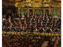 Венский филармонический оркестр вернет отобранную у еврейского коллекционера картину