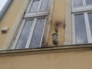 Firebomb hurled at Ukrainian synagogue
