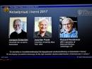 Нобелевскими лауреатами по химии стали разработчики методов криоэлектронной микроскопии