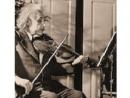 Скрипку Эйнштейна продали за полмиллиона долларов