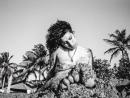В издательстве Taschen выйдет книга с неизвестными снимками Эми Уайнхаус, сделанными ее другом