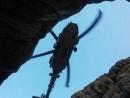 Израильские военные принимают участие в спасательной операции в Иордании