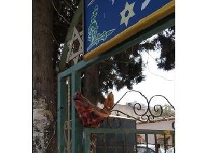 На входе в синагогу в Рамат а-Шароне обнаружена отрезанная голова свиньи