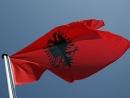 Албания высылает иранских дипломатов, причастных к подготовке теракта против израильтян