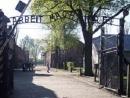 Каждый пятый нехристианин во Франции никогда не слышал о Холокосте