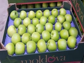 Впервые партия молдавских яблок была отправлена в Израиль
