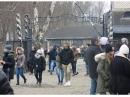 Музей Аушвиц-Биркенау посетили 2 миллиона 152 тысячи человек