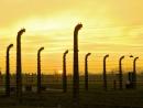 Верховный комиссар ООН: Холокост начинался не с газовых камер, а со стереотипов и предрассудков