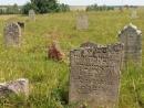 Завершена работа по документации старого Еврейского кладбища Сейряй