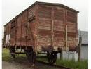 Центр Симона Визенталя призывает бельгийские железные дороги извиниться за депортацию евреев во время войны