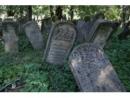 Новый сайт расскажет о 1500 еврейских кладбищах
