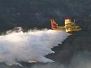 Пожарные самолеты из Италии, Кипра, Греции и Хорватии прибудут в Израиль к полудню