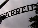 Польский суд отправил в тюрьму молодых людей, устроивших стриптиз и жертвоприношение в Аушвице