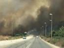 Пожары в Израиле: волну огня удалось остановить