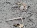 В центре Белой Церкви найдены останки на территории бывшего еврейского кладбища