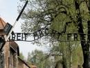 В Израиле и Польше отметят 75-летие освобождения концлагеря «Аушвиц-Биркенау»