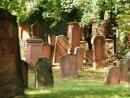 Древние еврейские объекты в Германии поборются за статус от ЮНЕСКО
