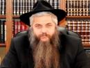 Главный раввин Украины попросил «Яд Вашем» о звании «Праведника народов мира» для митрополита Шептицкого
