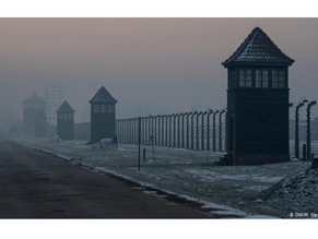 В Освенциме завершается подготовка к 75-й годовщине освобождения концлагеря «Аушвиц-Биркенау»
