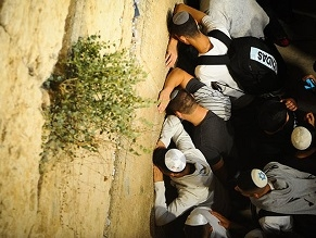 Эпидемия коронавируса: у Стены Плача в Иерусалиме состоялась массовая молитва