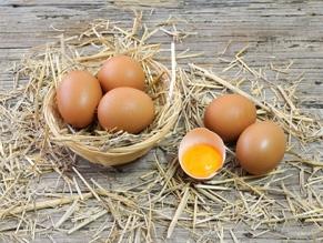 МИД Израиля договорился о поставках яиц из Украины