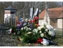 Памятные мероприятия к 75-летию освобождения Бухенвальда прошли онлайн