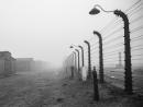 Сибилла Штайнбахер прочитает онлайн-лекцию об освобождении Аушвица