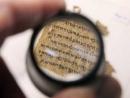 ДНК раскрыла секреты Свитков Мертвого моря