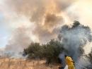 Рекордное количество возгораний с начала новой волны «огненного террора»