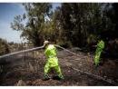 Израиль отправит пожарных на помощь охваченной огнем Калифорнии