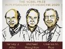 Объявлены лауреаты Нобелевской премии по медицине-2020