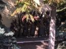 СБУ совместно с посольством Израиля 16 октября проведет масштабные антитеррористические учения