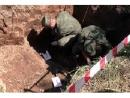 Под Псковом обнаружили останки жертв нацизма