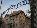 Музей Аушвиц в Освенциме объявил конкурс на выставку о польских узниках