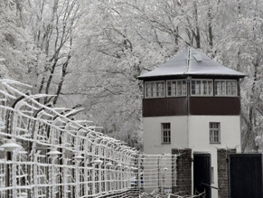 В Германии жалуются на людей, которые катаются на санях на территории бывшего концлагеря Бухенвальд
