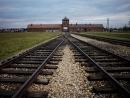 Мемориал в Аушвице осудил статью Маши Гессен, возлагающую на поляков ответственность за Холокост