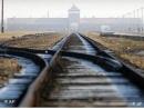 В Польше начато расследование по поводу массового захоронения, обнаруженного недалеко от Аушвица