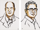 Нобелевскую премию по физиологии и медицине присудили Дэвиду Джулиусу и Ардему Патапутяну
