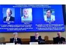 Нобелевская премия по физике присуждена за моделирование земного климата